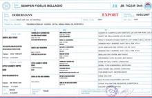 Dokumenti o psu, izvozni rodovnik, export pedigree