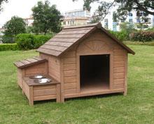 Namestitev psa v stanovanju ter namestitev v pesjaku, paja uta