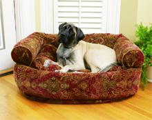 Namestitev psa v stanovanju ter namestitev v pesjaku