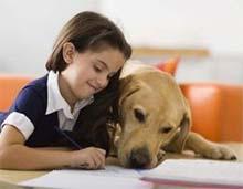 Kako se mora pes obnašati v družbi otroka, Pes in otrok