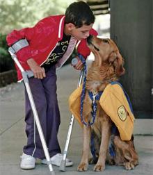 Vloga psa v človekovem okolju, pes za vodenje slepih in pomoč invalidom