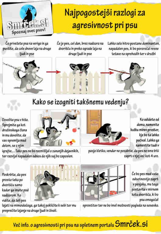 Najpogostejši razlogi za agresivnost pri psu